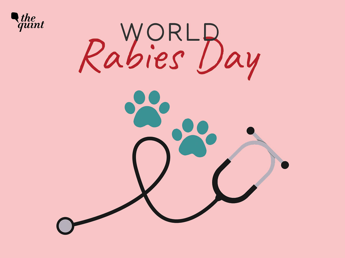"""<div class=""""paragraphs""""><p>Take a step towards saving lives from rabies this World Rabies day</p></div>"""