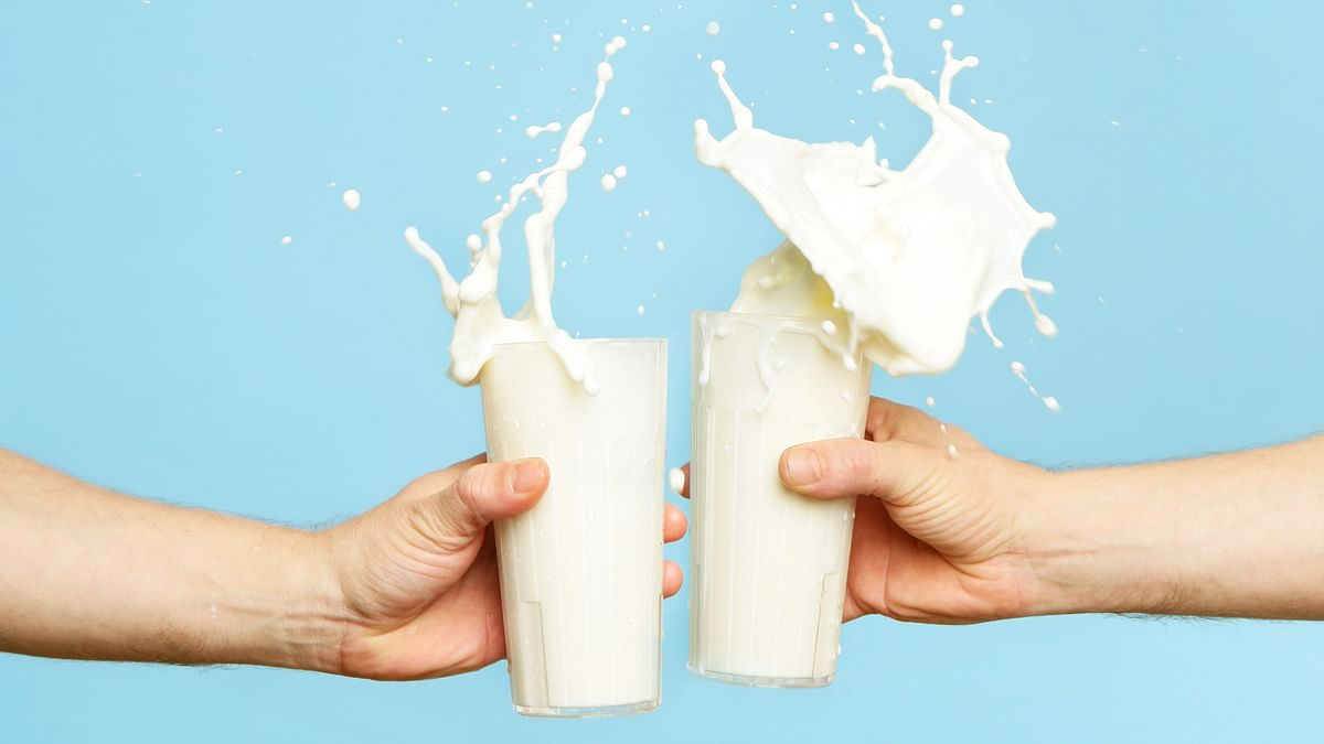 """<div class=""""paragraphs""""><p>Plant-based vs dairy: The tug of war for the 'milk' tag continues</p></div>"""
