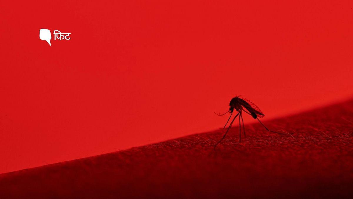 """<div class=""""paragraphs""""><p>Severe Dengue Symptoms</p></div>"""