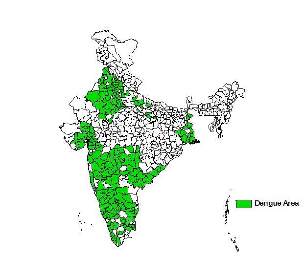 कैसे करें डेंगू की रोकथाम? इन चीजों पर जरूर दें ध्यान