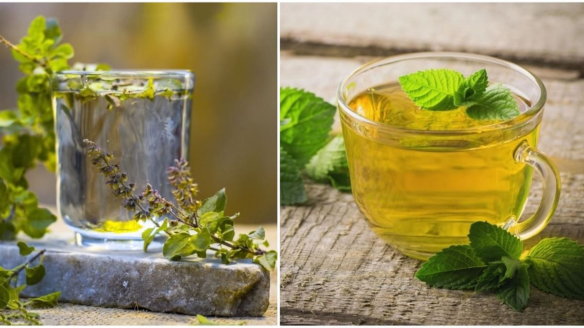 7 Herbal Teas to Stay Healthy in Monsoon 2019: बरसात के इस मौसम में आपको हेल्दी रखेंगे ये 7 हर्बल चाय